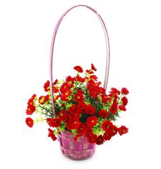 Free Hanging Basket With Flowers Isolated Royalty Free Stock Image - 9642826