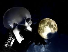 Free Shouting Skeleton And Nighttime Sky Royalty Free Stock Image - 9643446