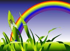 Free Summer Meadow Rainbow Stock Photo - 9643730