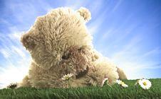 Free Teddy Bear Royalty Free Stock Image - 9644926