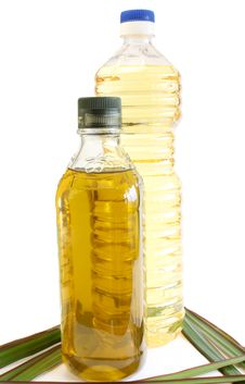 Oil Olive And Sunflower Royalty Free Stock Images