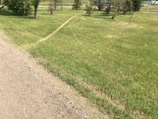Free When Desire Paths Have Desire Paths Stock Photography - 96494372