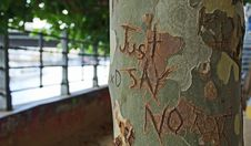 Free Just Say No Print On Green Branch Of A Tree Royalty Free Stock Photography - 96494507