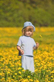 Free Boy With A Dandelion Royalty Free Stock Photo - 9650885