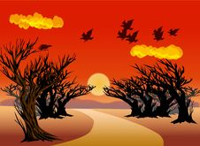 Free The Trees Under The Sunset -illustrator Stock Photos - 9652873