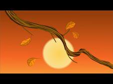 Free The Rattan Under The Sunset -illustrator Stock Photos - 9652893