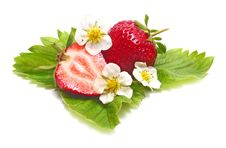 Free Strawberry Slice And Blossom Royalty Free Stock Image - 9654596