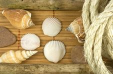 Free Beach Theme Royalty Free Stock Image - 9655656