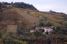 Free Italian Vineyards In Oltrepo Pavese Stock Images - 9656184