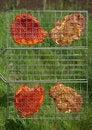 Free Appetizing  Shashlik On Barbecue Royalty Free Stock Photography - 9667607