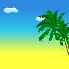 Free Palm Tree Stock Images - 9660704