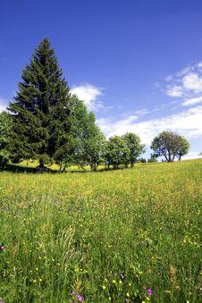 Free Mountain Stock Image - 9661441