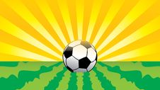 Free Football On Grass Royalty Free Stock Images - 9665039