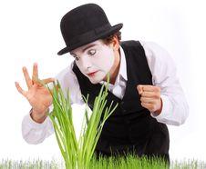 Free Crazy  Gardener Mime. Studio Shot Royalty Free Stock Photos - 9665698