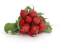 Free Radishes Royalty Free Stock Photo - 9667565