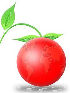 Free World Fruit (01) Royalty Free Stock Photos - 9668388