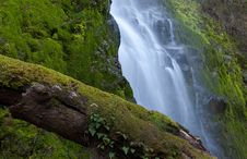 Free Cascade Falls Stock Photo - 9670600