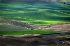 Free Palouse Farm Royalty Free Stock Photos - 9670648