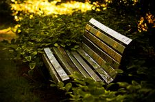 Free Old Park Bench Royalty Free Stock Photography - 9672007