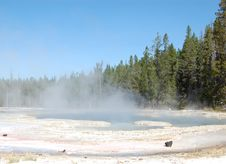 Free Yellowstone Solitary Geyser Royalty Free Stock Photo - 9674395