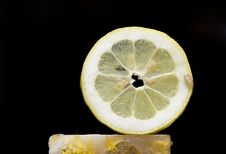 Free Lemon Slice In Black Stock Photos - 9675793