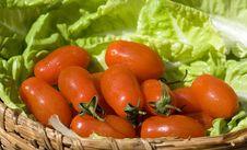 Free Healthy Food Royalty Free Stock Photo - 9675805