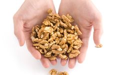 Human Hand Holding Walnut Nuts Stock Image
