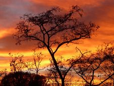 Free Sky, Red Sky At Morning, Afterglow, Ecosystem Stock Photography - 96732132