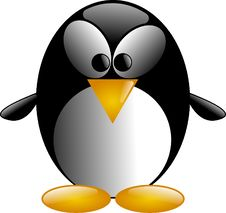 Free Penguin, Beak, Bird, Flightless Bird Royalty Free Stock Image - 96740816