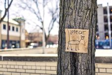 Free Macro Photography Of Brown And Black Lost Cat Signage On Black Bare Tree Stock Images - 96793104