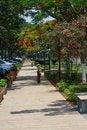 Free Walking Path Royalty Free Stock Image - 9687496