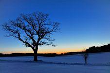 Free Sunset Royalty Free Stock Photos - 9681858