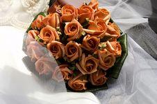 Free Orange Roses Royalty Free Stock Image - 9681946