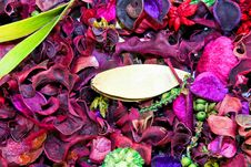 Free Potpourri Leaves Stock Photography - 9684292