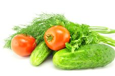 Cucumbers, Tomatoes And Greens Stock Photography