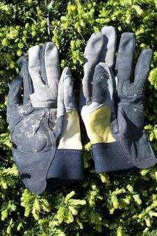 Garden Gloves Stock Photos