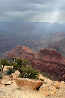 Free Grand Canyon National Park, USA Royalty Free Stock Photo - 9687415