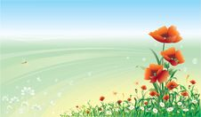 Free Floral Design Royalty Free Stock Image - 9689506