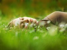 Free Girl Lying In Grass Stock Photography - 9689672