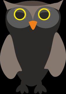 Free Owl, Bird, Beak, Bird Of Prey Royalty Free Stock Images - 96816579