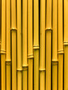 Free Bamboo Stalks Royalty Free Stock Photos - 9695428