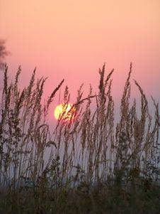 Free Sundown Royalty Free Stock Photo - 9691675