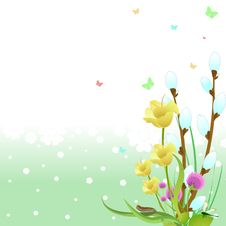 Free Spring Background Stock Photography - 9693212
