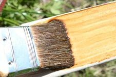 Free Brush Royalty Free Stock Photography - 9693677