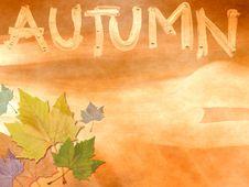 Grunge Autumn Theme Stock Image