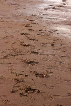Free Footprints In The Sand Stock Image - 9697981