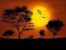 Free Sky, Nature, Savanna, Sunrise Royalty Free Stock Images - 96926309