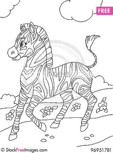 Free Little Zebra Stock Image - 96951781