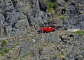 Free Red Bus On Cliff Road Royalty Free Stock Photos - 972118