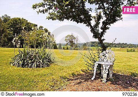 Free Lawn Chair Under Tree Royalty Free Stock Image - 970236